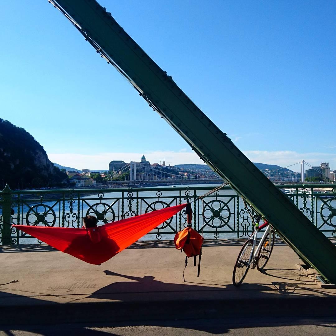 freedom bridge hammock